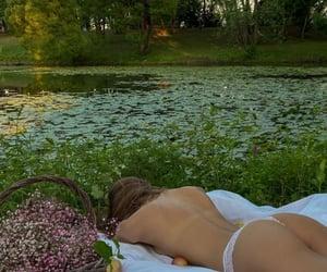 nature, cottagecore, and picnic image