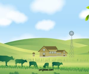 agriculture, cow, and field image
