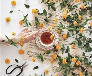 cup of tea, flowers, and music image