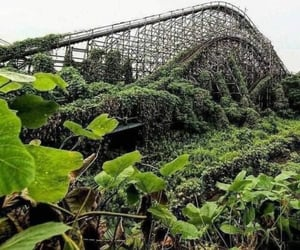 green, pretty, and Roller Coaster image