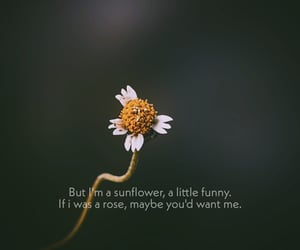 alone, broken, and flower image