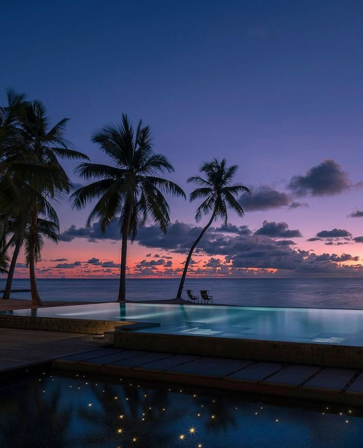 ocean, pool, and palms image