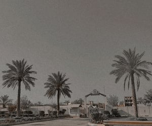 baghdad, palms, and sky image