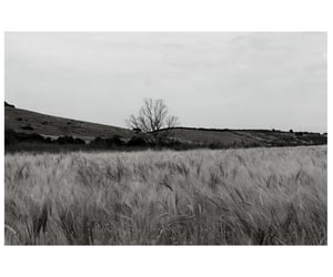 alternative, black and white, and grunge image