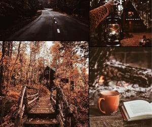 autumn, book, and cream image