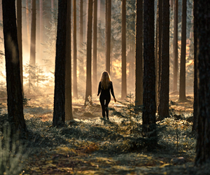 forest, girl, and nature image