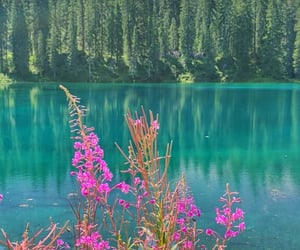 August, colorfull, and italy image