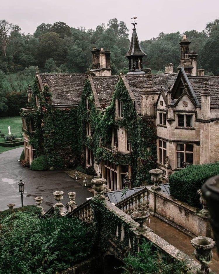 academy, fantasy, and vampire image