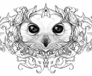 owl, art, and illustration image