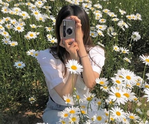 flowers, girl, and daisy image