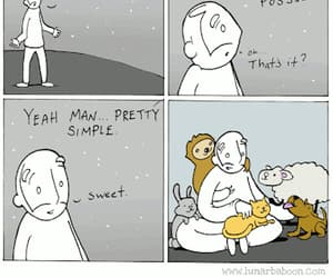what is my purpose?, pet as many soft animals, and it's pretty simple image