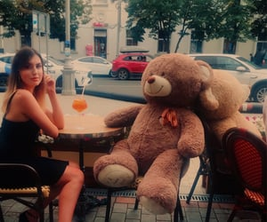 bear, restaurant, and cafe image