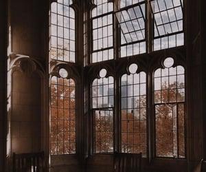 architecture, window, and dark academia image