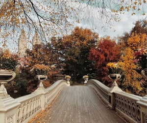 fall, autumn, and travel image