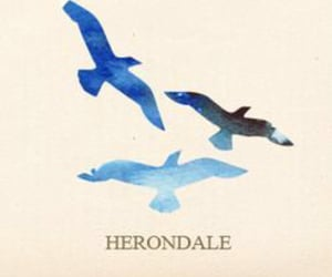 herondale, books, and reading image