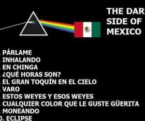 memes, Pink Floyd, and rainbow image