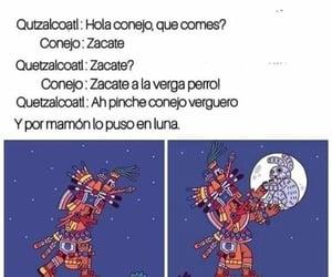 conejo, humor, and méxico image