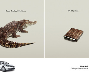 ad, car, and crocodile image