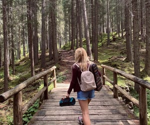 blonde, journey, and nature image