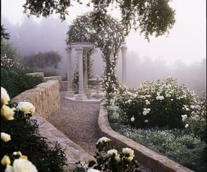 places, garden, and roses image