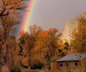 arcoiris, autumn, and fall image