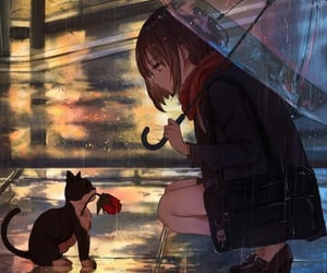one rainy night...