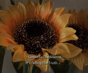 flower, listening, and quote image