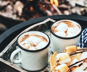 aesthetic, cocoa, and campfire image
