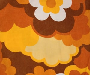 aesthetic, brown, and flower image