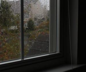 comfort, fall, and rain image
