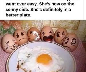 humor, meme, and puns image