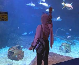 aquarium, aquarius, and fish image