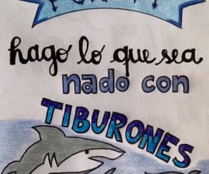lettering, quote, and shark image