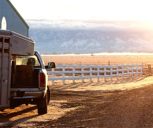 country living, ranch, and truck image