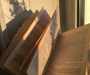 book, aesthetic, and beige image