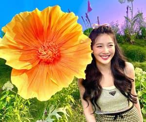 kpop, flower, and joy image