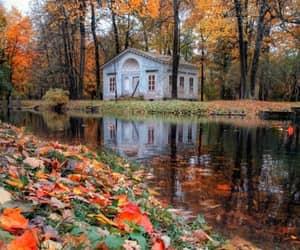 casa, bosque, and río image