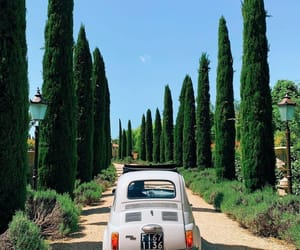 beautiful, italy, and nature image