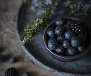 blueberries, nature, and purple image