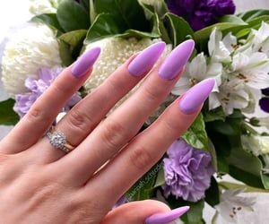 beauty, hand, and lilac image