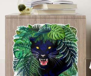 animals, cat, and panther image
