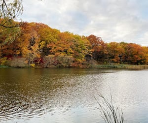 first day of fall, first day of autumn, and 1st day of fall image