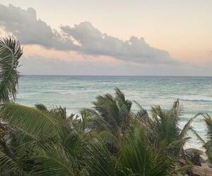beach, green, and ocean image