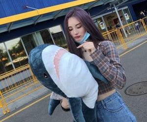 2000s, kpop, and shark image