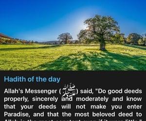 islam, jannah, and جَنَة image