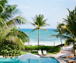 beach, tropical, and paradise summer image