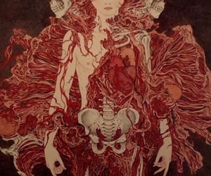 art, skeleton, and illustration image