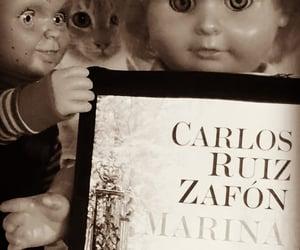 books, marina, and zafòn image