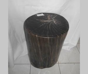 petrified wood, petrified wood stool, and petrified wood bali image