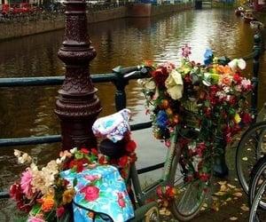 amazing, bicycle, and fabulous image